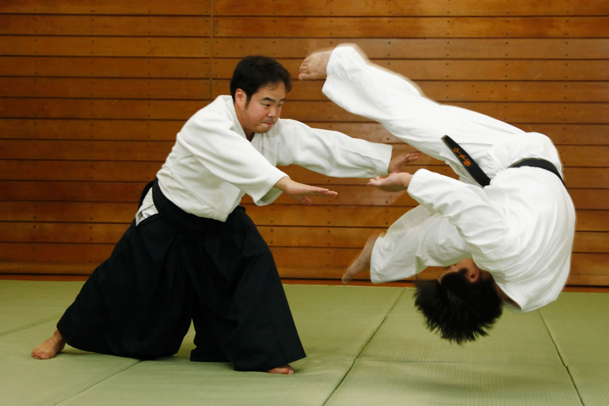 Demonstration of Aikido Throwing