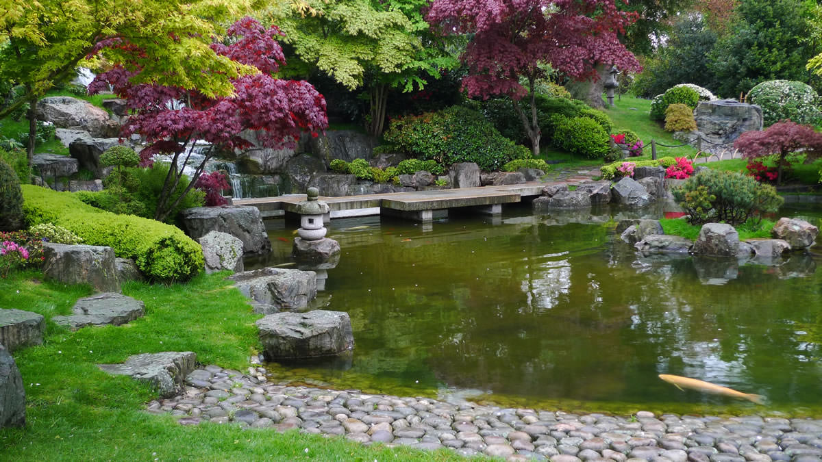 Decoration Zen Aquarium : Japanese garden — encyclopedia of japan