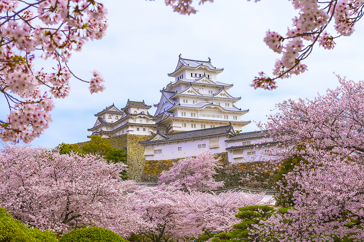 Himeji castle, registered as the world heritage by UNESCO