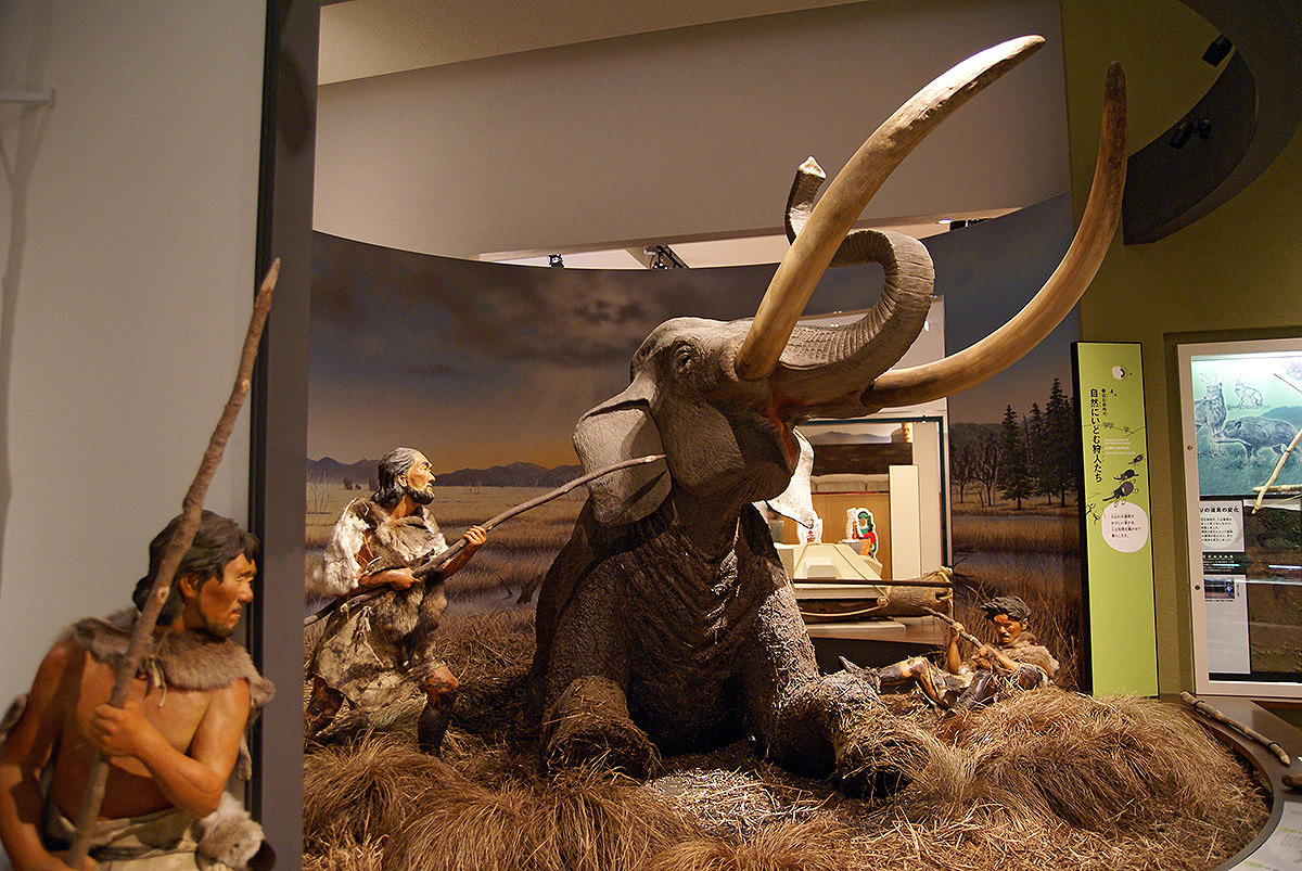 Ancient Japanese people hunting down the huge mammoth