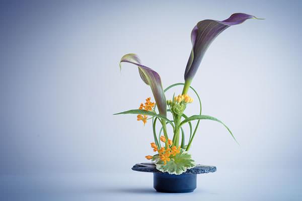 Ikebana encyclopedia of japan for Japanese flower arranging crossword clue