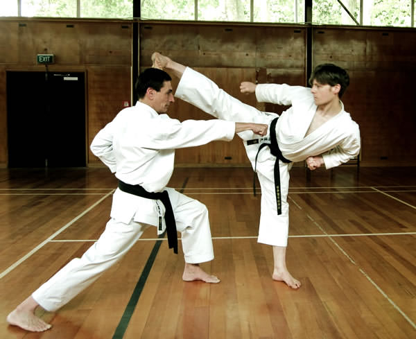 differances in japanese and okinawn karate Okinawa: the land of karate : okinawa, the southernmost  on this episode of  journeys in japan, aikido master william reed travels  or perhaps you  recognize that despite differences, you are in pursuit of a common goal.