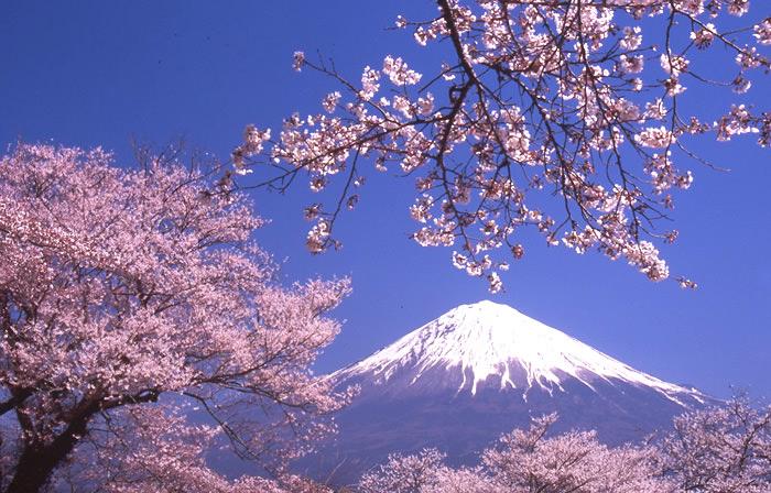 Waka of Japan