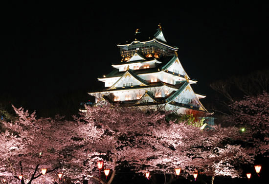 Sakura and Osaka castle at night