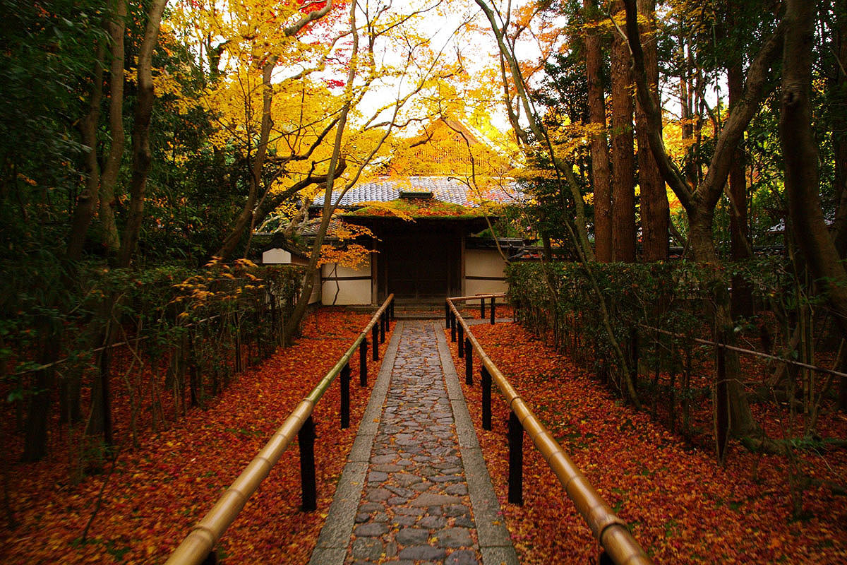 Roji of Takakura-in Temple in Autumn